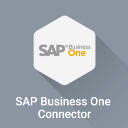 TreoPIM-SAP Business One Connector
